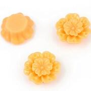 http://www.adalee.ro/11683-large/cabochon-rasina-floare-18mm-portocaliu-deschis.jpg
