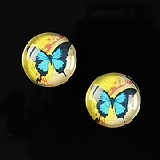 http://www.adalee.ro/23804-large/cabochon-sticla-16mm-colorful-wings-cod-027.jpg