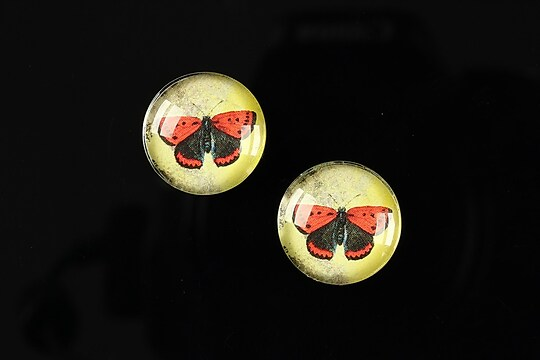 "Cabochon sticla 16mm ""Colorful wings"" cod 029"