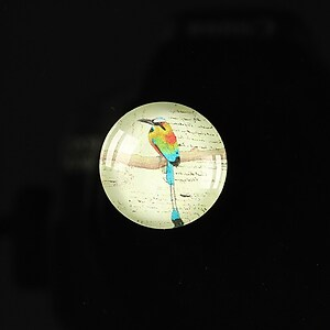 "Cabochon sticla 18mm ""Colorful birds"" cod 107"
