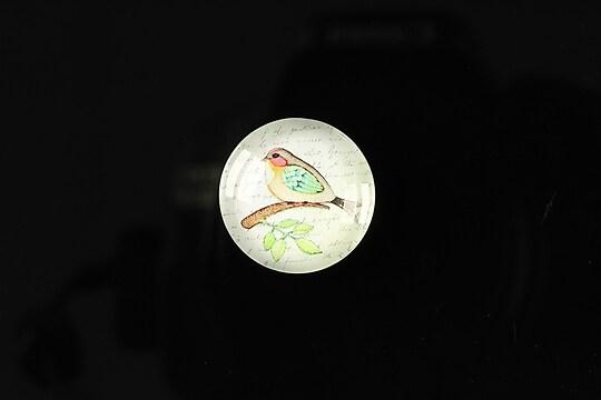 """Cabochon sticla 18mm """"Colorful birds"""" cod 108"""