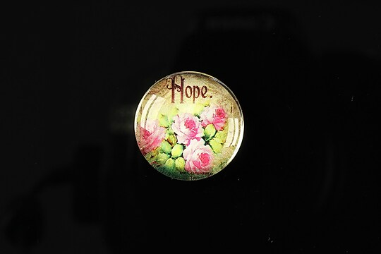 "Cabochon sticla 20mm ""Amazing roses"" cod 160"