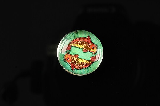 "Cabochon sticla 20mm ""Tribal zodiac"" pesti cod 168"
