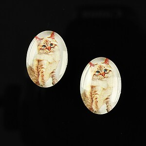 "Cabochon sticla 18x13mm ""Best friends"" cod 231"