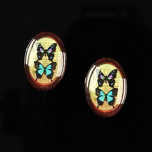"Cabochon sticla 18x13mm ""Butterfly effect"" cod 243"