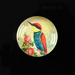 "Cabochon sticla 25mm ""Bird collection"" cod 268"
