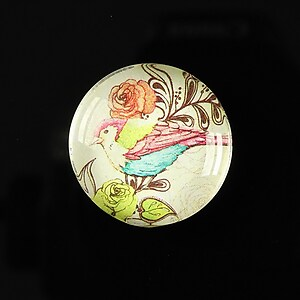 "Cabochon sticla 25mm ""Bird collection"" cod 266"