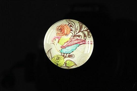 "Cabochon sticla 25mm ""Bird collection"" cod 266"