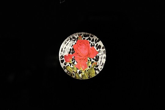 "Cabochon sticla 20mm ""Animal print theme"" cod 357"