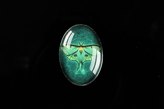 "Cabochon sticla 25x18mm ""Wings Diversity"" cod 402"