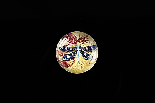 "Cabochon sticla 18mm ""Colourful Dragonfly"" cod 433"