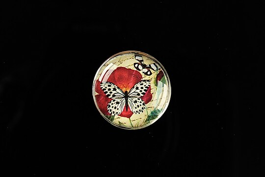 """Cabochon sticla 20mm """"'Forever Butterfly"""" cod 499"""