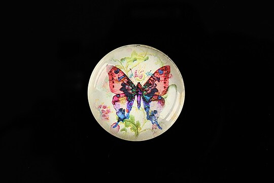 "Cabochon sticla 25mm ""Beauty of Butterfly"" cod 504"