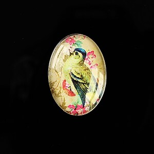 "Cabochon sticla 25x18mm ""Birds Sounds"" cod 512"