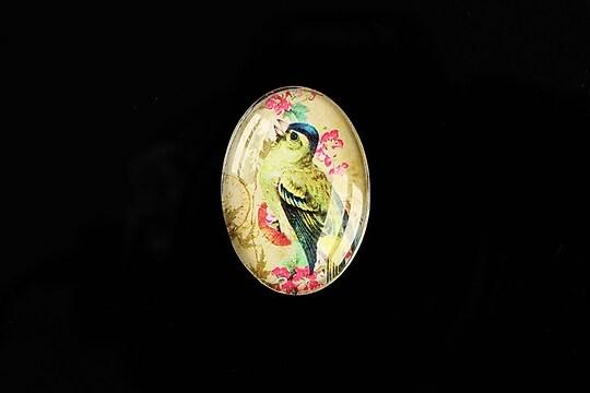 "Cabochon sticla 25x18mm ""Birds Sounds"" cod 512"