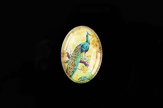"Cabochon sticla 25x18mm ""Birds Sounds"" cod 513"