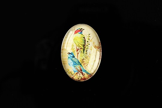 "Cabochon sticla 25x18mm ""Birds Sounds"" cod 516"