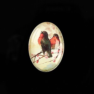 "Cabochon sticla 25x18mm ""Birds Sounds"" cod 517"
