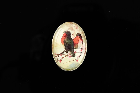 "Cabochon sticla 25x18mm ""Birds Sounds"" cod 517"
