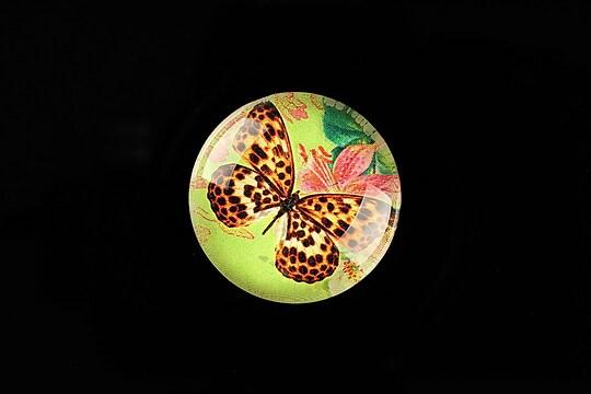 "Cabochon sticla 25mm ""Amazing Butterfly"" cod 779"