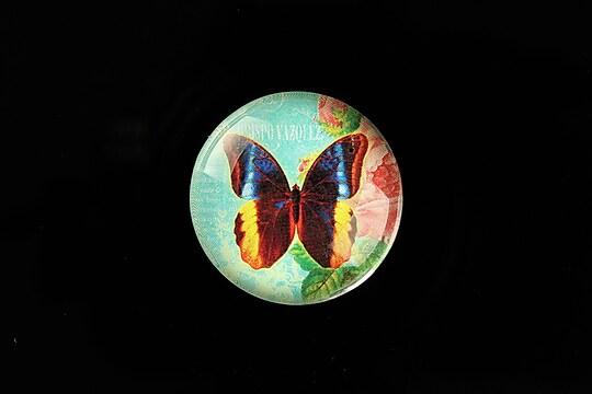 "Cabochon sticla 25mm ""Amazing Butterfly"" cod 781"