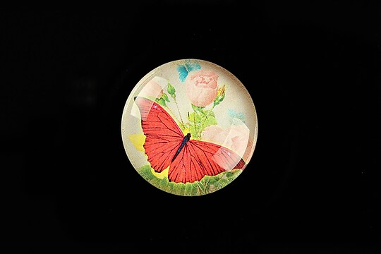 "Cabochon sticla 25mm ""Amazing Butterfly"" cod 782"