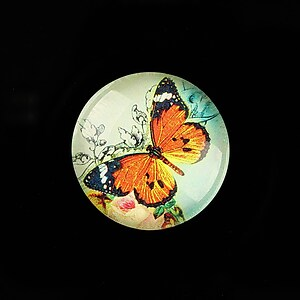 "Cabochon sticla 25mm ""Amazing Butterfly"" cod 783"