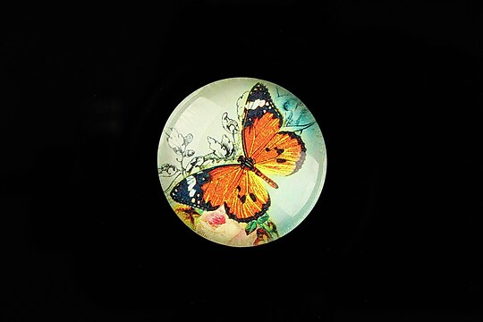 "Cabochon sticla 25mm ""Amazing Butterfly"" cod 783"