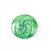 http://www.adalee.ro/65589-large/cabochon-sticla-25mm-cactus-cod-1242.jpg