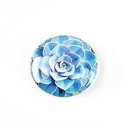 http://www.adalee.ro/65592-large/cabochon-sticla-25mm-cactus-cod-1240.jpg