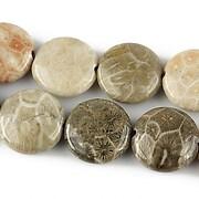 http://www.adalee.ro/73054-large/coral-fosil-banut-14mm.jpg