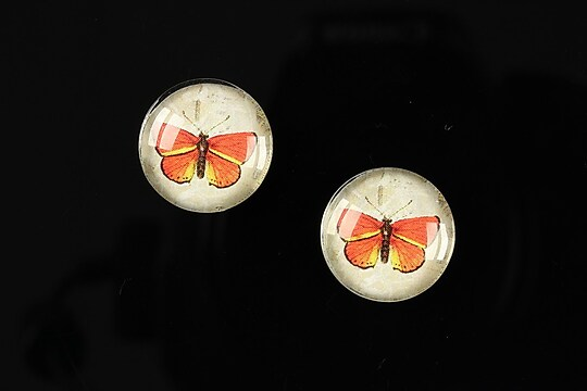 "Cabochon sticla 16mm ""Colorful wings"" cod 026"