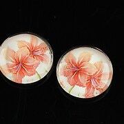 https://www.adalee.ro/56809-large/cabochon-sticla-20mm-summer-cod-1103.jpg