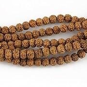 Margele Rudraksha 5 fete - aprox. 4mm