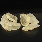 https://www.adalee.ro/89757-large/pandativ-chiffon-si-cristale-25-30mm-ivoriu.jpg